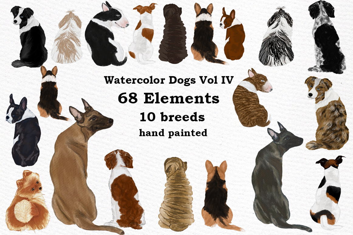 Dog Clipart, Dog breeds, Pet clipart,Puppies clipart Dog Png.