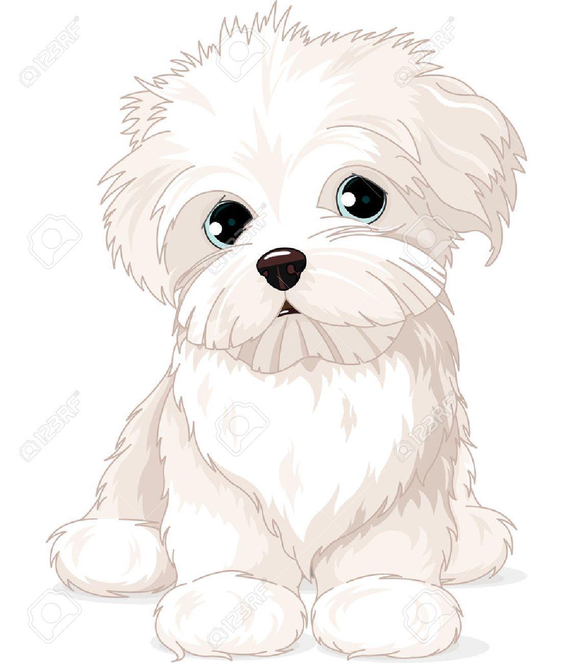Clipart Maltese Puppy Dog.