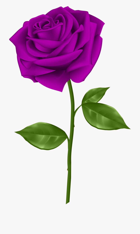 Purple Flower Clipart Purple Rose.
