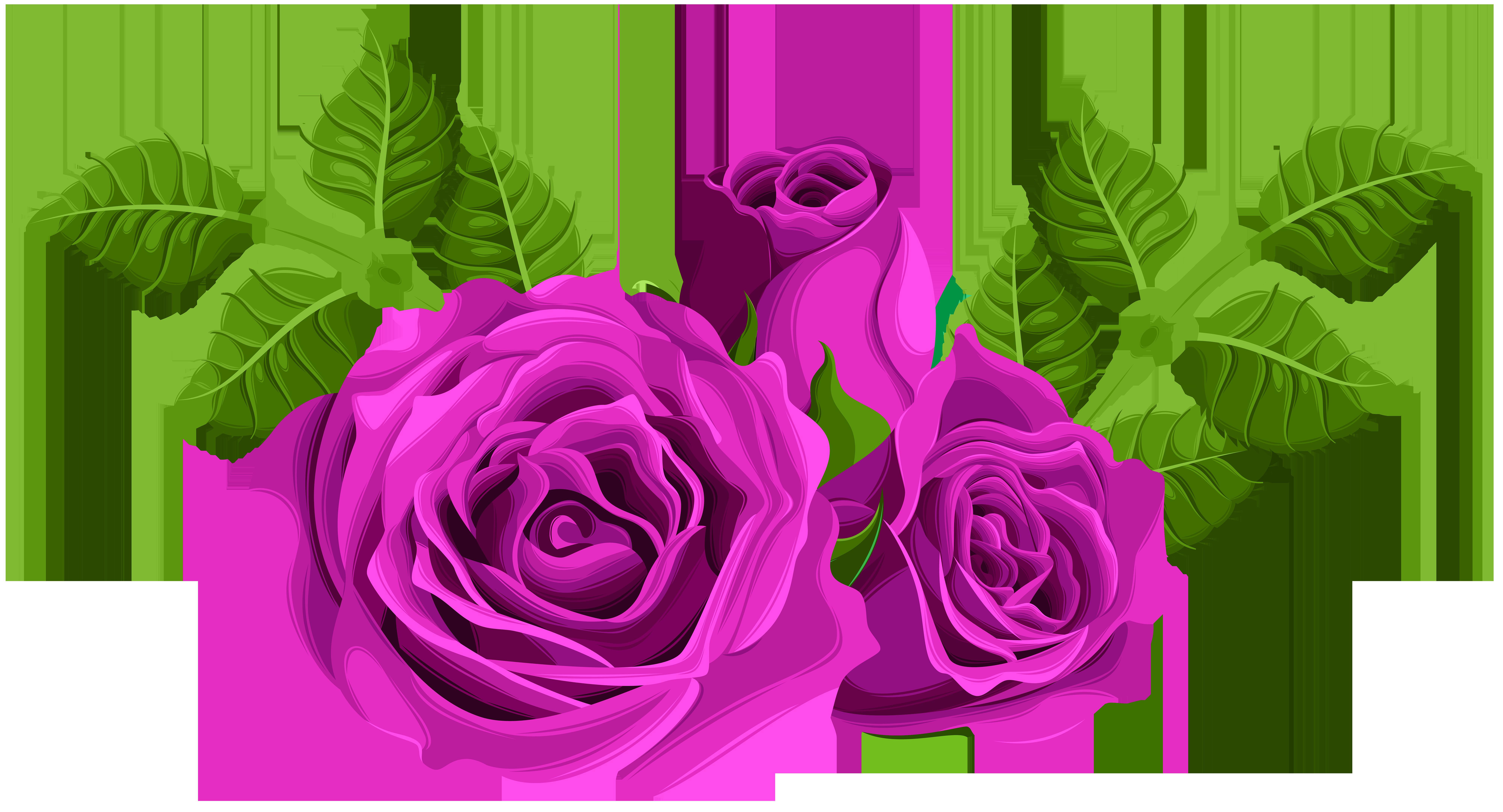 Purple Roses Decorative PNG Clip Art Image.