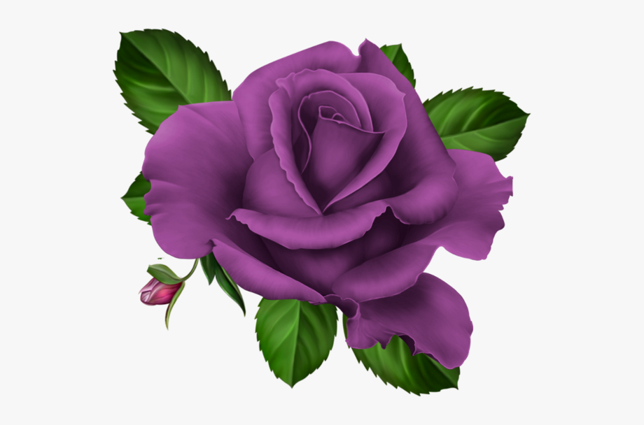 Floral Clipart Purple.