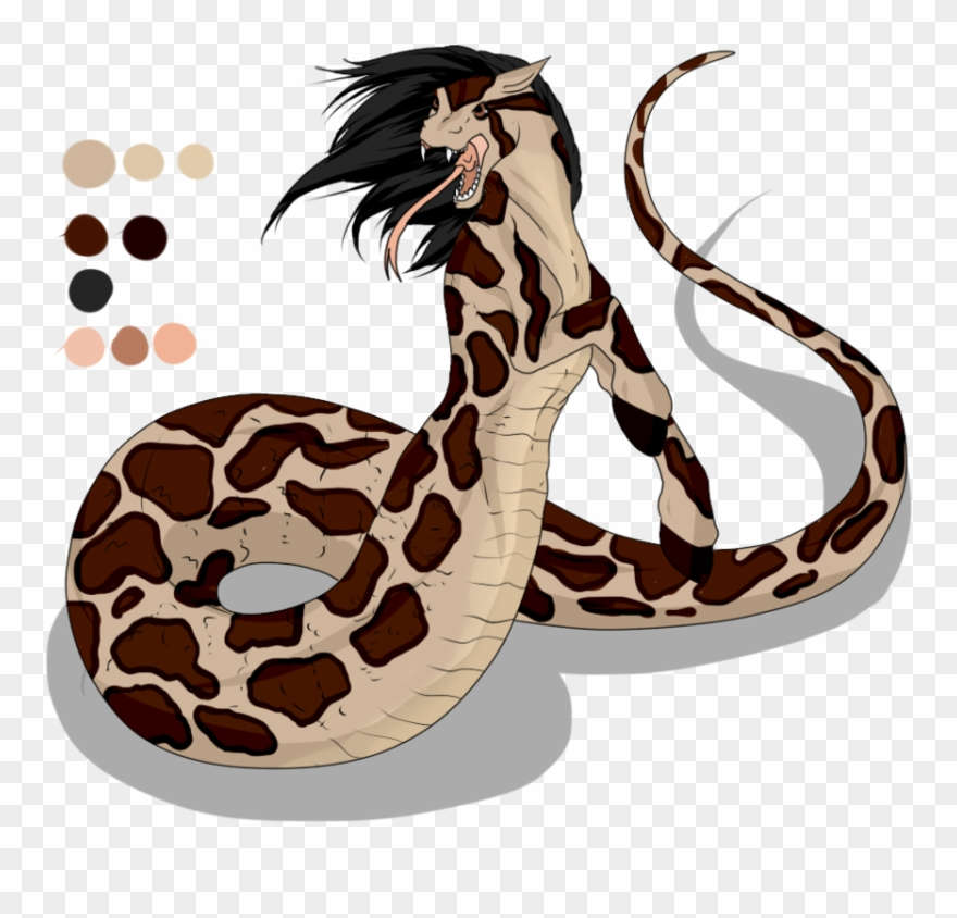 clipart python 10 free Cliparts | Download images on ...