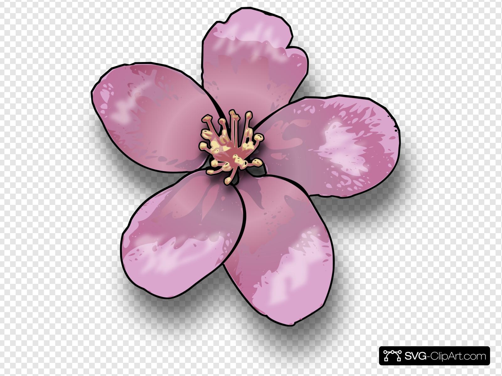 Apple Blossom Clip art, Icon and SVG.