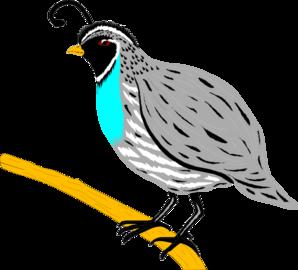 Free Quail Cliparts, Download Free Clip Art, Free Clip Art.