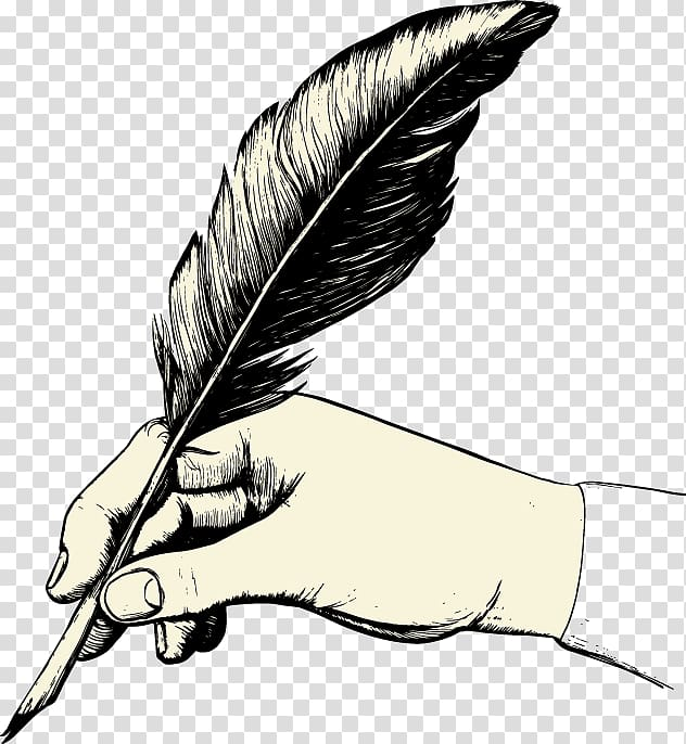 Feather Paper Quill Pen , feather transparent background PNG.