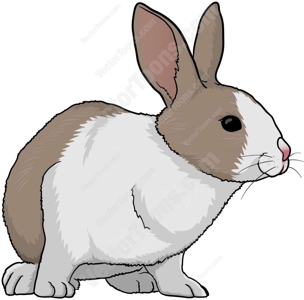 Brown And White Rabbit Facing Left Cartoon Clipart.