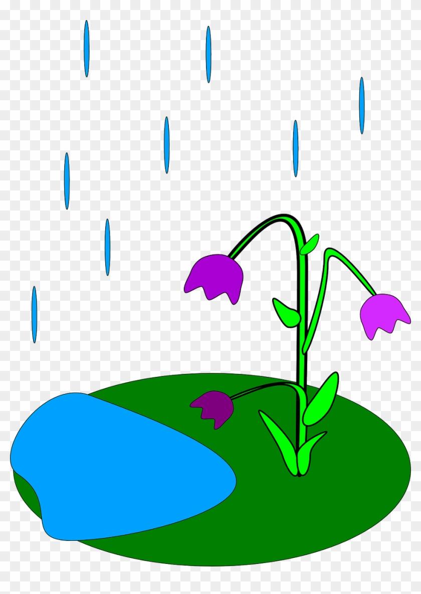 Raindrops Clipart Drizzle Rain.