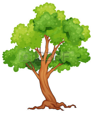 5,184 Rainforest Tree Cliparts, Stock Vector And Royalty Free.