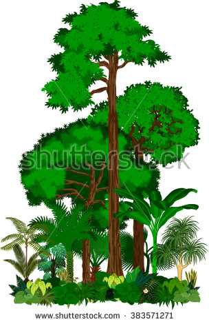 Jungle Trees Stock Images, Royalty.