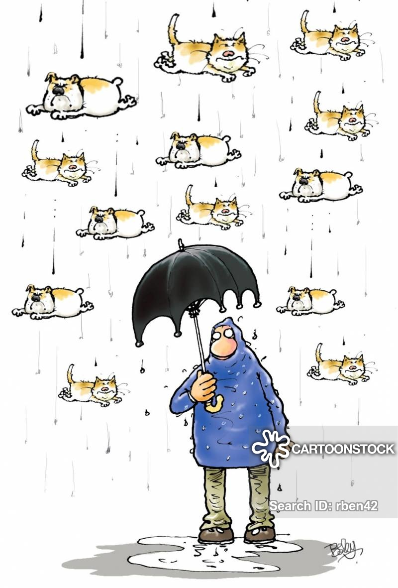 Raining Cats And Dogs Cartoons and Comics.