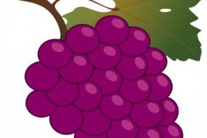 Clipart raisin » Clipart Portal.
