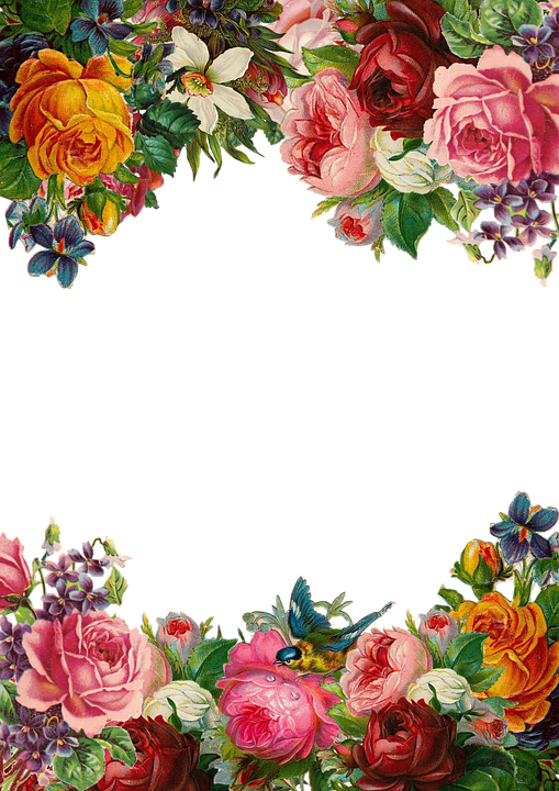 Download Free png Blomst, Rose, Ramme, Indsamli.