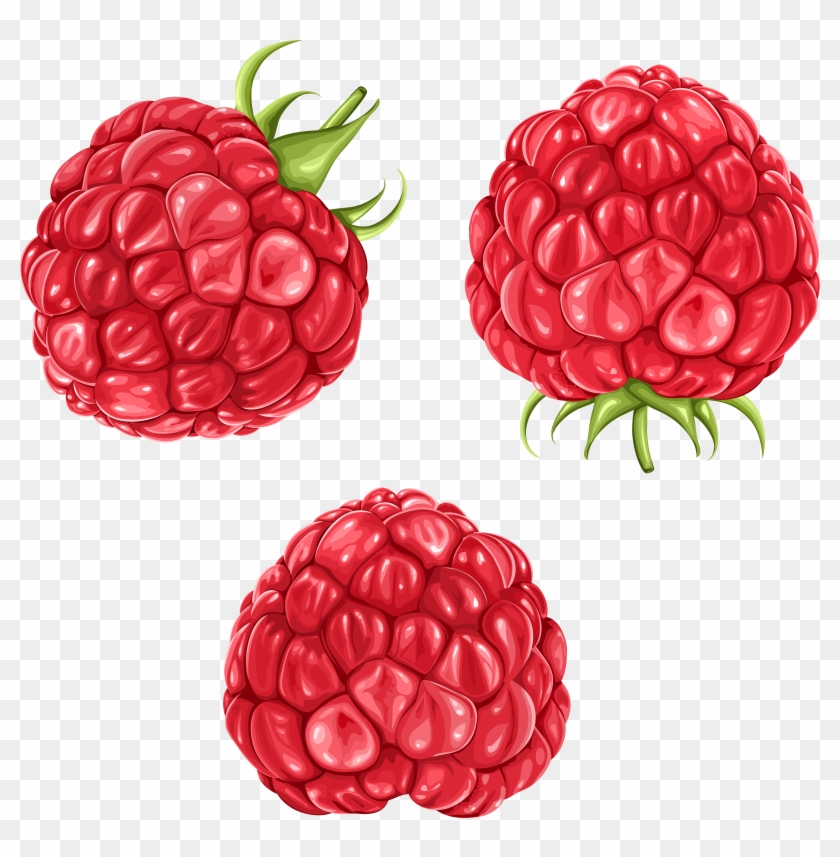 Raspberries Png Clipart Picture.