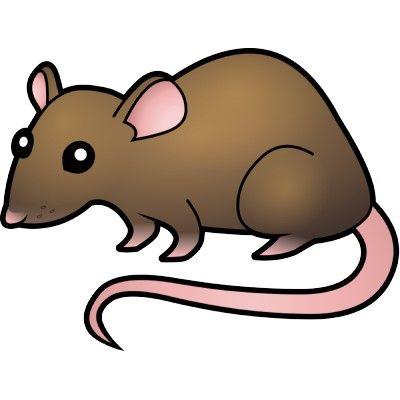Coolest Clipart Rat cartoon rat clipart free clip art images.