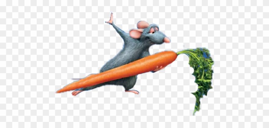 Carrot Sticker.
