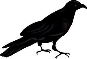 Raven Clipart Image:.