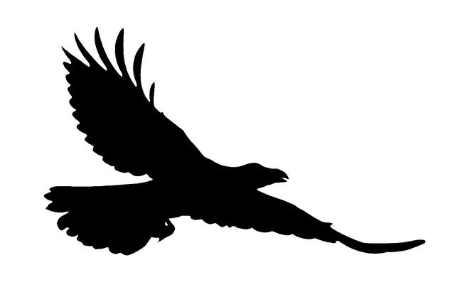 Free Raven Cliparts, Download Free Clip Art, Free Clip Art.