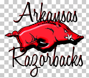 4 arkansas Razorback Clipart PNG cliparts for free download.