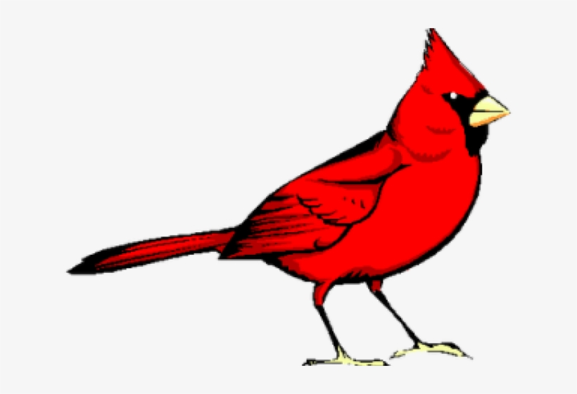 Graphic Freeuse Library Cardinal Clipart.