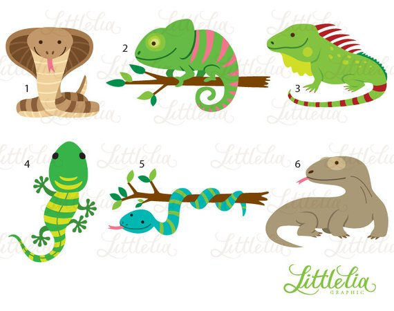 Reptile clipart.