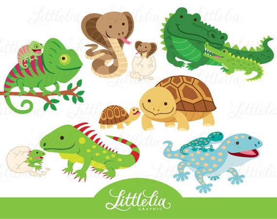 Reptile mom and baby clipart.