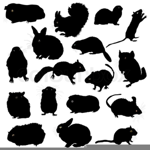 Clipart Of Rodents.