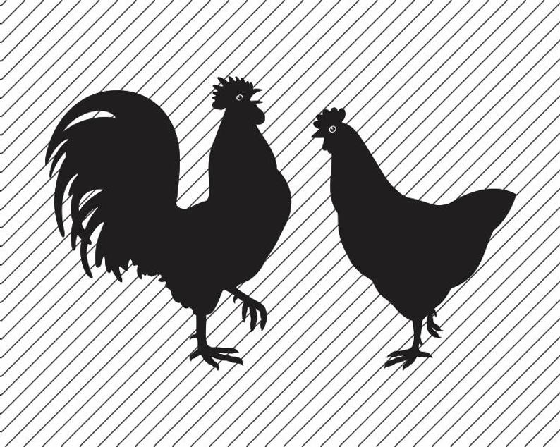 Crowing Rooster Chicken svg file Clipart Rooster Iron on Transfer Rooster  and Chicken SVG Cricut Cutting Laser Engraving.