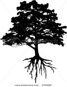 Tree Roots clip art.