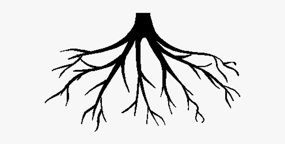 Root Clipart Black And White , Transparent Cartoon, Free.