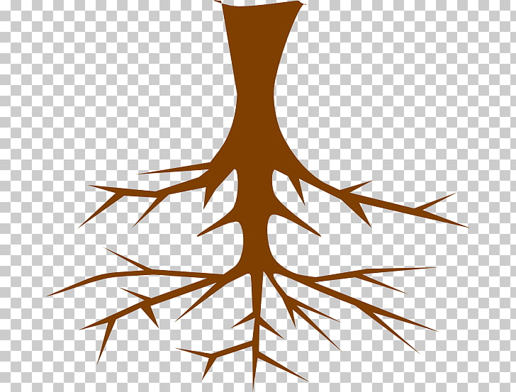 Root Tree , roots PNG clipart.