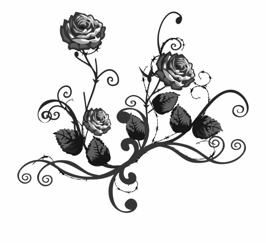 Rose Black White Floral Elegant Png Image.
