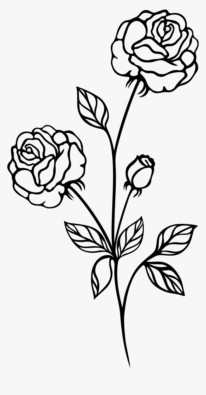 Rose Bush Clipart Plan.