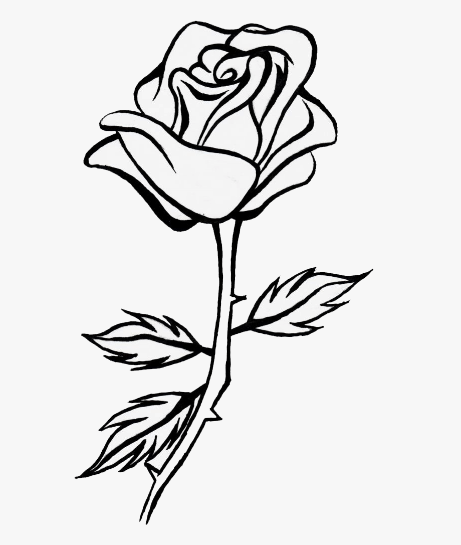 999 Flower Clipart Black And White Cloud.