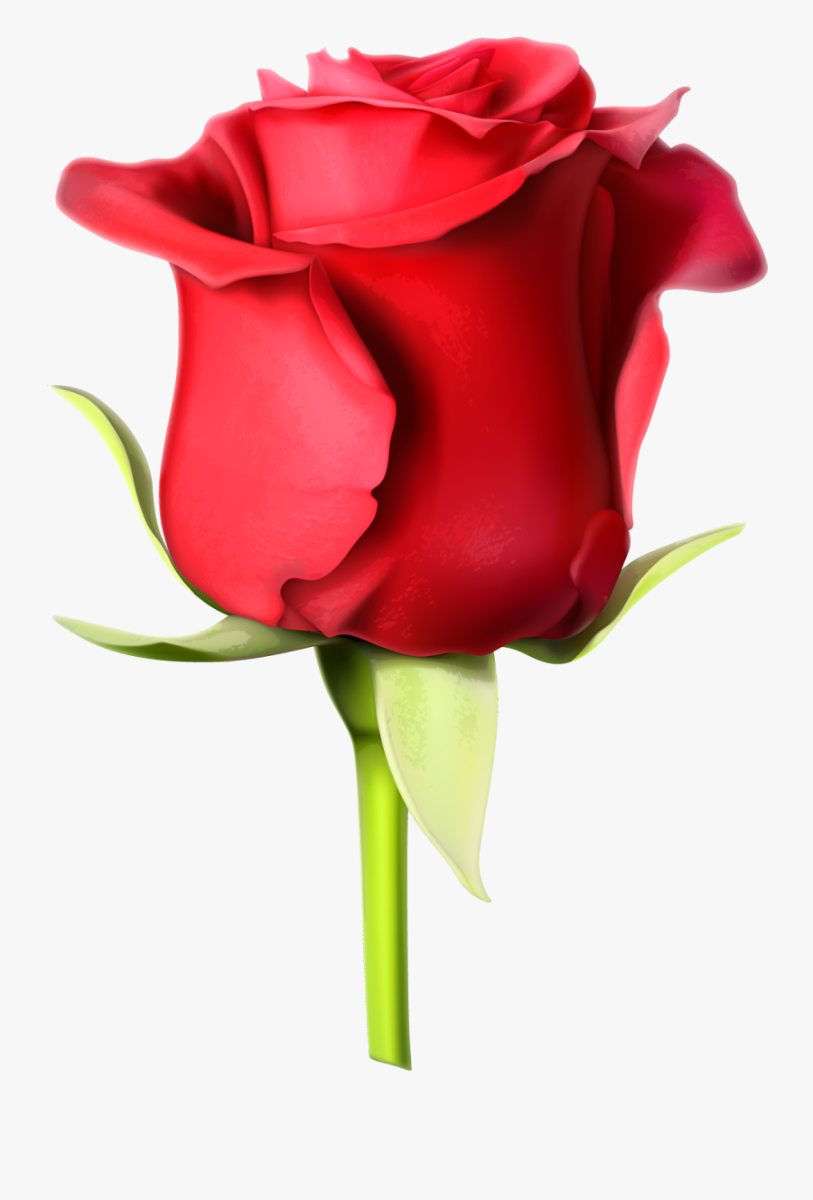 Rose Images Hd Download Clipart , Png Download.