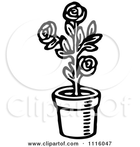 Clipart of a Vintage Black and White Banner and Rose Bush.