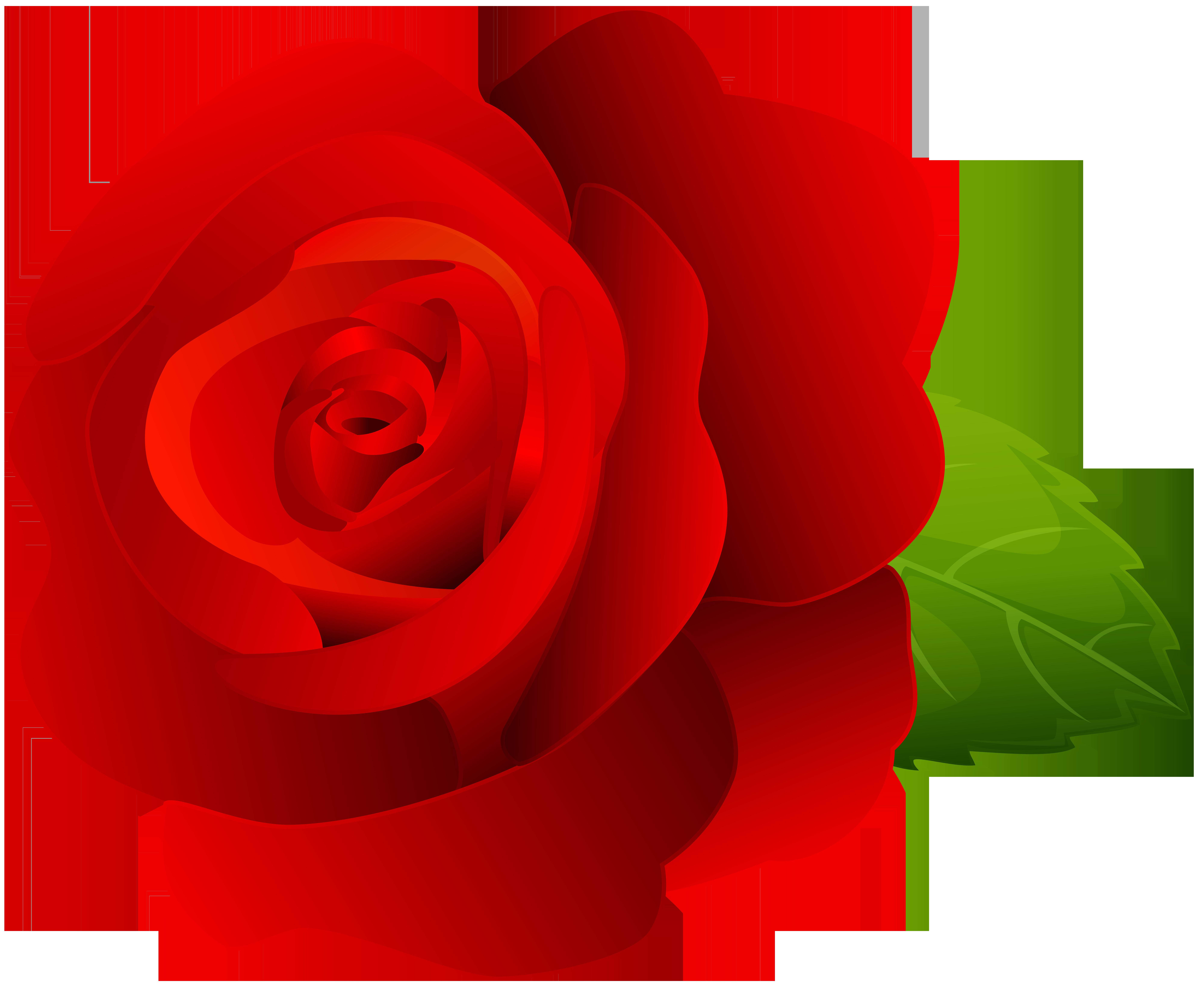 Rose Red Clip Art PNG Image.