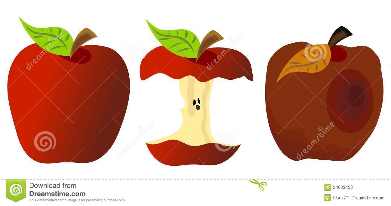Rotten Apple Stock Illustrations.