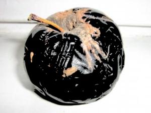 Rotten Apple Clip Art at Clker.com.