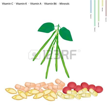 56 Runner Beans Stock Illustrations, Cliparts And Royalty Free.