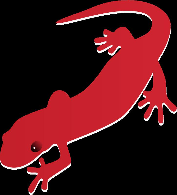 Free Clipart: Salamander.