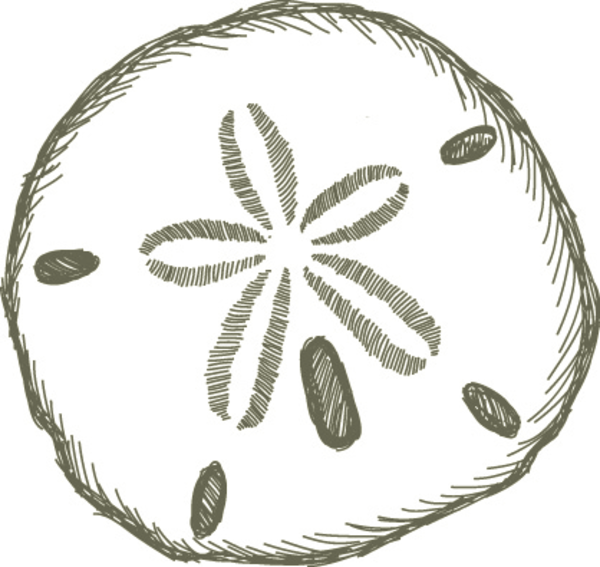 Sand Dollar Free Images At Vector Clip Art Online.