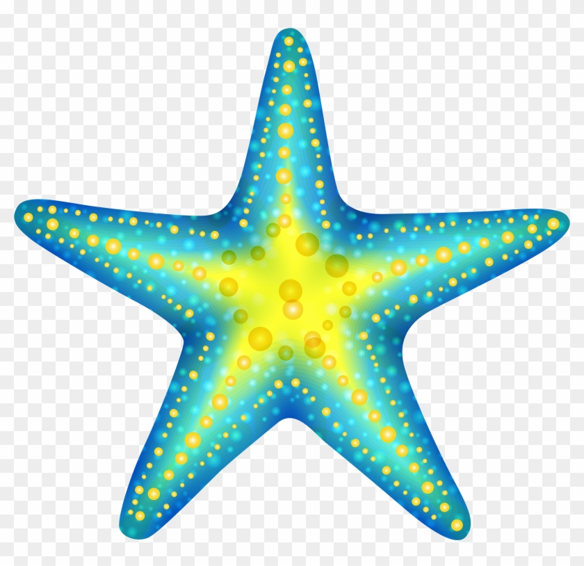 Sea Star Clip Art, HD Png Download (#21362).