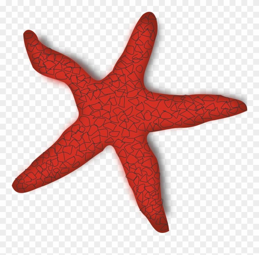 Clipart Starfish.