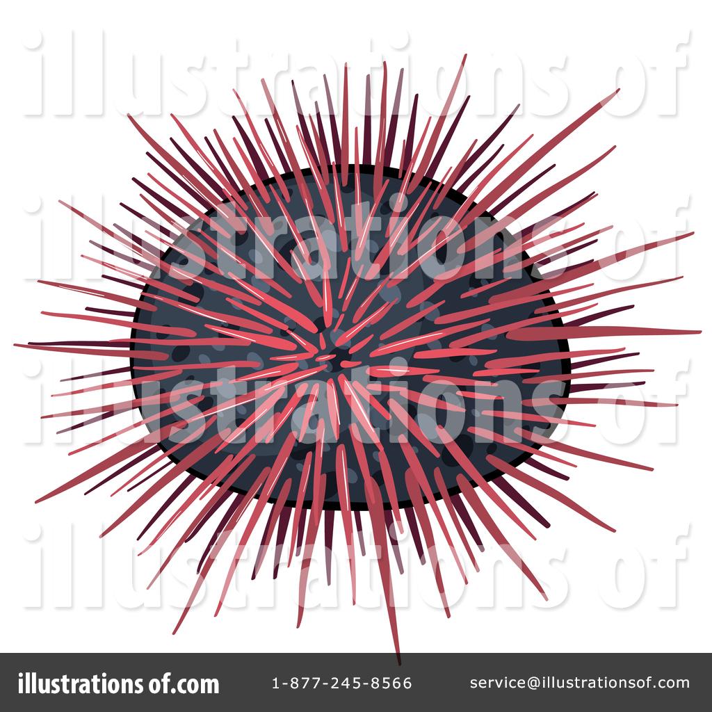 Sea Urchin Clipart #1383454.
