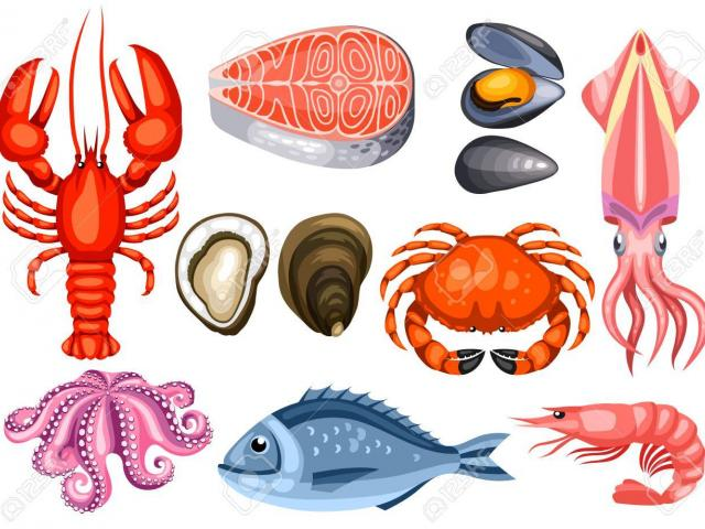 Seafood clipart different, Seafood different Transparent.