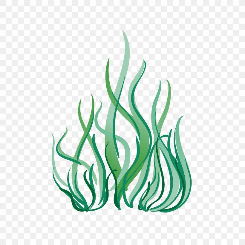 Aquatic Plants Cartoon Vector Graphics Image Seagrass, PNG.