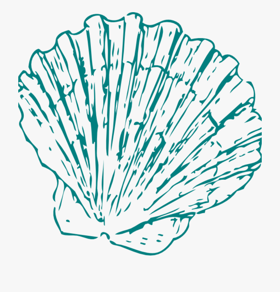 Seashell Clipart Greeen Sea Shell Clip Art At Clker.