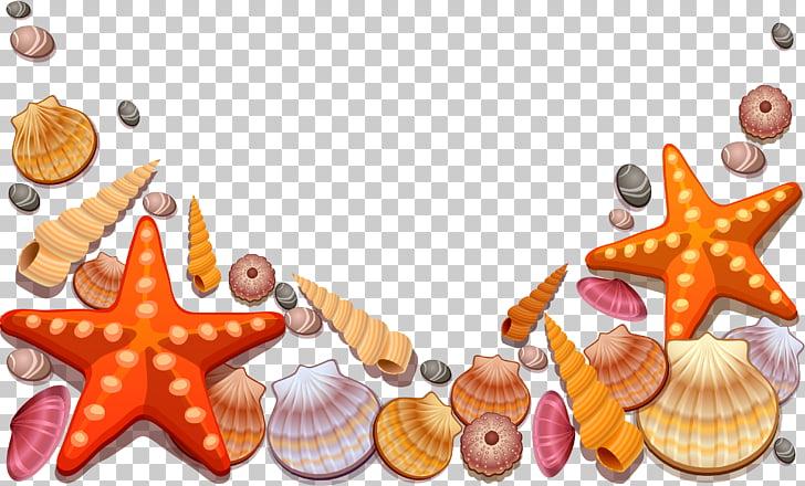 Seashell , starfish, assorted seashells illustration PNG.