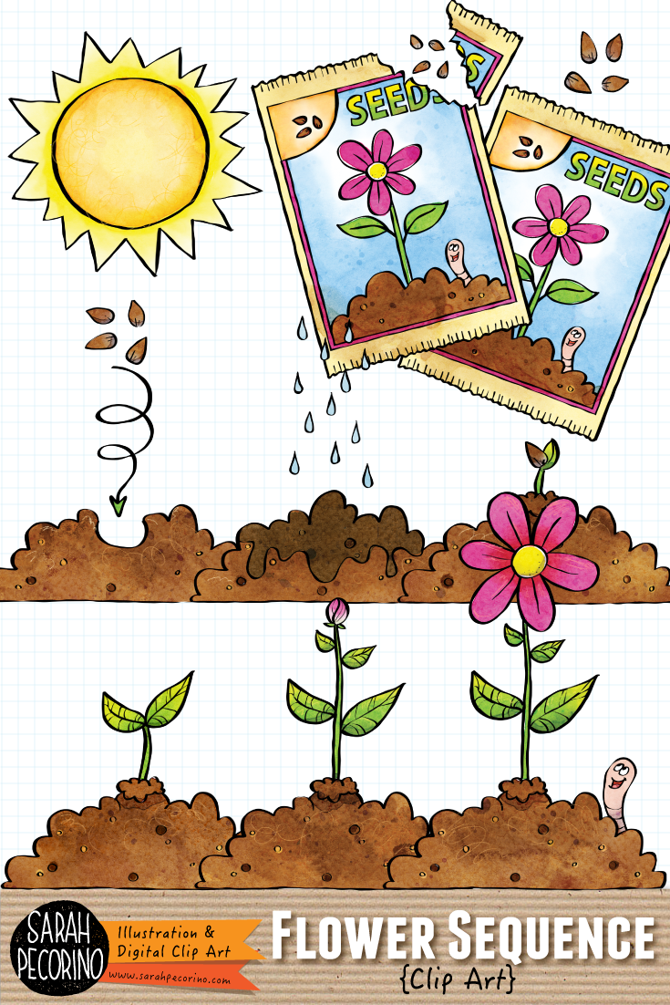 Spring Flower Sequence Clip Art in 2019.