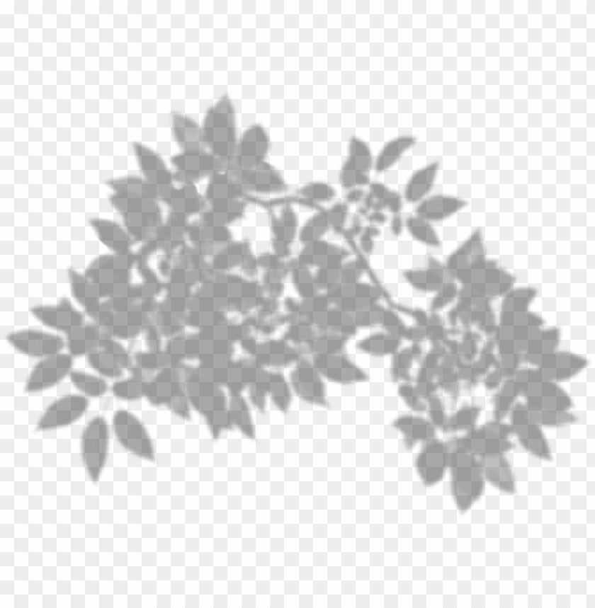 tree shadow png clip art.